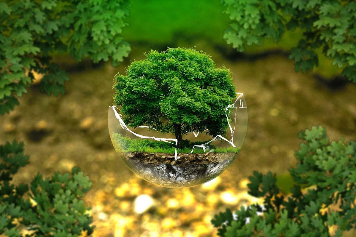 Maailman ympäristöpäivä