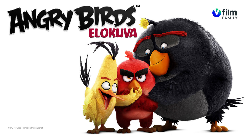 V film – Andry Birds elokuva