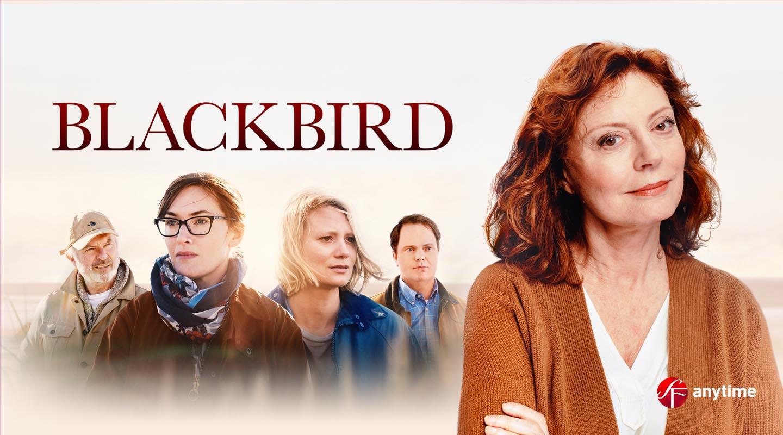 Blackbird Vuokraamossa