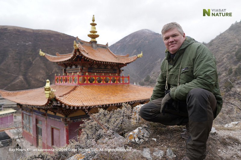 Ray Mears Kiinan luonnossa Viasat Nature -kanavalla