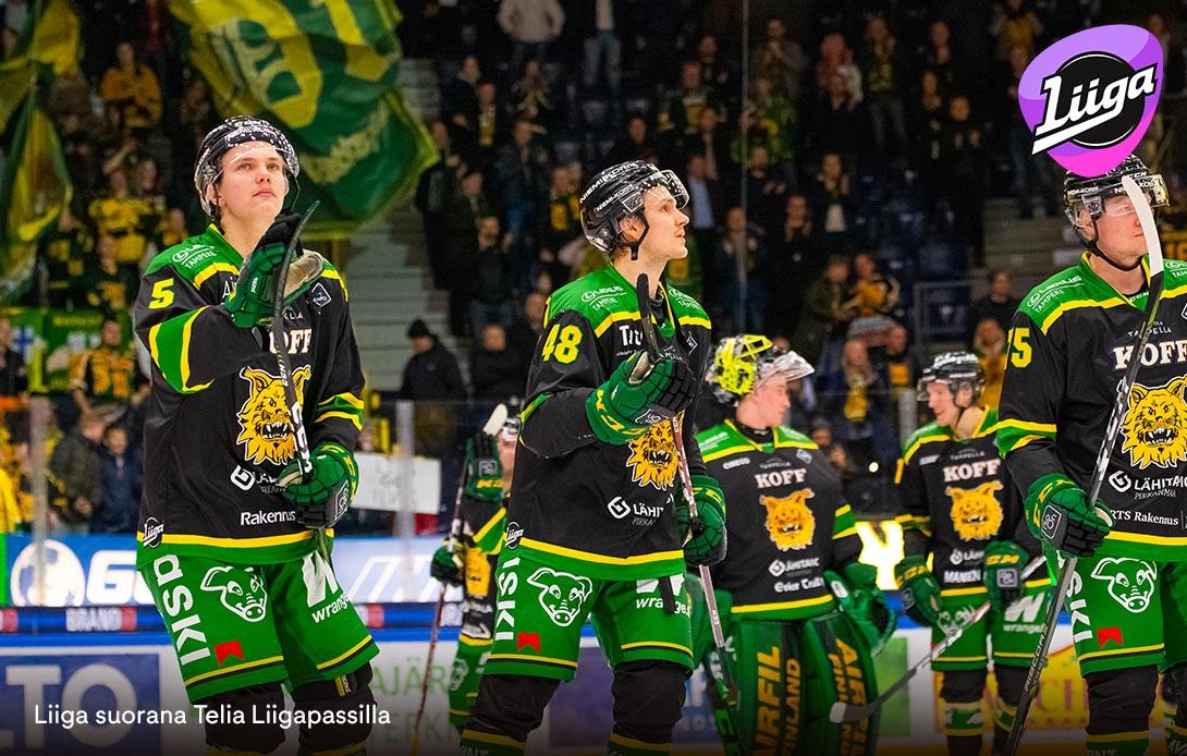 Liiga Ilves