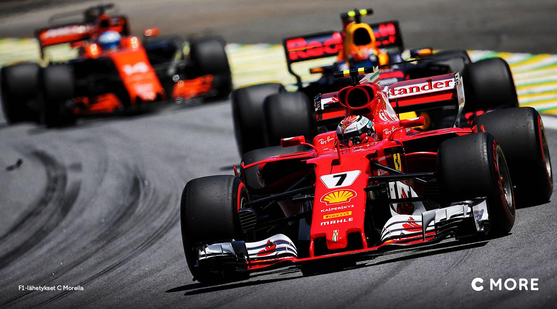 F1 C Morella