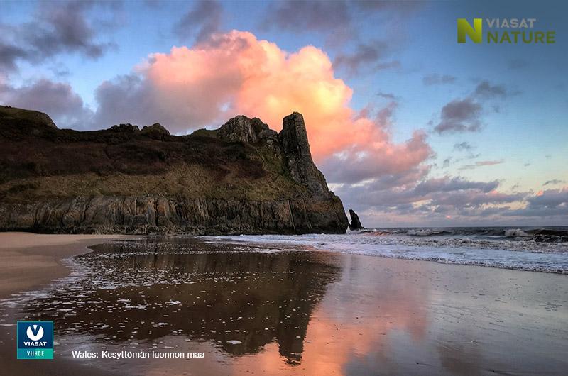 Viasat Nature: Wales, kesyttömän luonnon maa