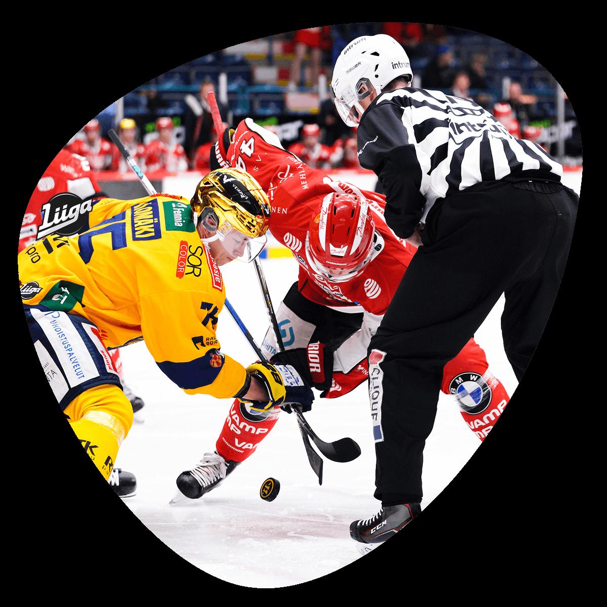 Sport - Lukko 2018-2019